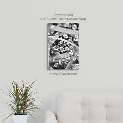 'Dewey Pearls' solid faced canvas wrap 12x18 on wall - StevenDTaylor.com