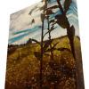 'Arthropod Dawning' solid faced canvas wrap 8x10 front bottom side - StevenDTaylor.com