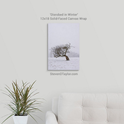 'Disrobed in Winter' solid faced canvas wrap 12x18 on wall - StevenDTaylor.com